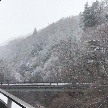 昨日は雪が降りました。